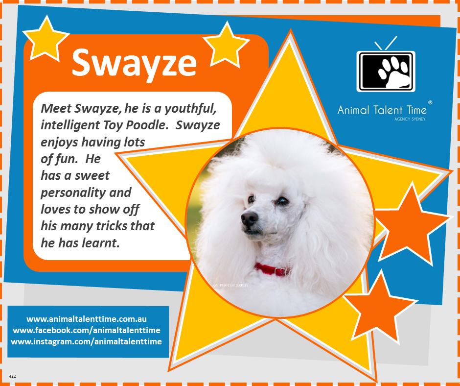 Swayze Pet of the Week